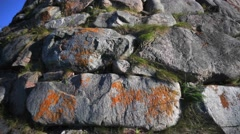 Huge stones covered with moss and grass. Stock Footage