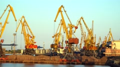 Cranes at the port illuminated the evening sun Stock Footage