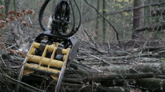 Forestry: Chipping machine working, close up Stock Footage