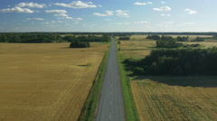Flying along Road in the countryside at Bright Summer Day. Stock Footage