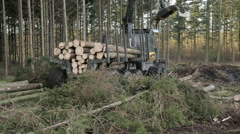 Forestry machines: Harvester and transporter Stock Footage