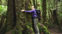 A hiker hugs a large rain forest tree in the tarkine wilderness Stock Footage