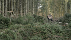 Forestry machines: transporter Stock Footage