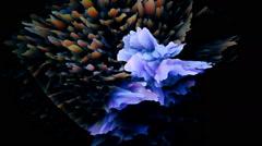 Surreal exotic multicolored flowing liquid VJ loop Stock Footage
