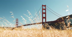 Golden Gate Bridge with Grassy Meadow Stock Footage