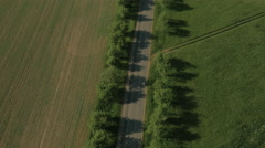 Aerial shot of Cyclist riding on Coutry Road in Bright Sunny Day. Stock Footage