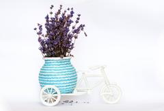 Lavender in a white decorative bicycle, over a white background Stock Photos