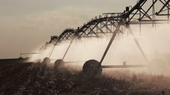 Agricultural irrigation on harvested wheat stubble field - stock footage