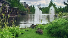 CIty park landscape design. Duck family on lake with water fountains Stock Footage