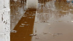 Dirty brown water in river Stock Footage