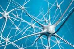 Neurons in brain, 3D illustration of neural network. Stock Illustration