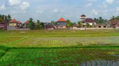 Modern Houses Fronting a Rice Plantation in Bali, Indonesia Stock Footage