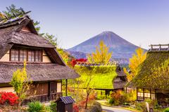 Mt. Fuji and Village Stock Photos