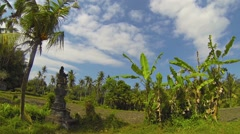 Religious Altars Stand over Agricultural Fields in Bali, Indonesia Stock Footage