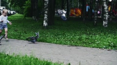 Little boy in shorts run for doves in summer park. Happiness. Childhood - stock footage