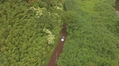 Aerial white car goes on the road in the jungle, the island of Maui Stock Footage