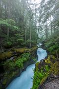 Water Rushes through the Carved Stone of Avalanche Creek Stock Photos