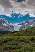 View of Athabasca Glacier from Wilcox Pass - stock photo
