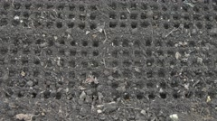 Straight lines of round cells in raw gray soil. Tilt from down to up Stock Footage
