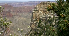 Grand Canyon North Rim, Angel's Window Stock Footage
