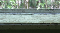 Windowsill in the deserted house. Smooth and slow dolly shot. Stock Footage