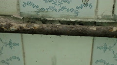 Rust pipe in the toilet of the abandoned camping. Smooth and slow dolly shot. Stock Footage