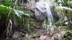 Hidden waterfall at Praslin island, Seychelles - stock footage