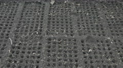 Man planting seeds in the soil. Straight lines of round cells in raw gray soil. Stock Footage