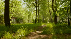 Trail in the park. Smooth and slow steady cam shot. Clean and bright daytime. Stock Footage