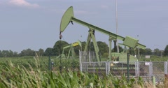 Pump jacks in corn field  EMLICHHEIM, GERMANY Stock Footage