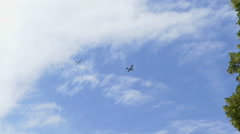 Plane is flying in the sky Stock Footage