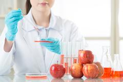 we do test it before launch the gmo food - stock photo