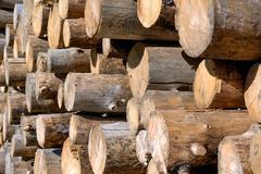 Timber harvesting Stock Photos