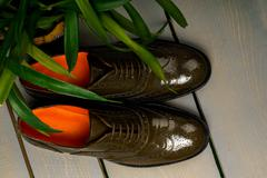 Green lacquered oxford shoes on wooden background near flowerpot. Top view. C Stock Photos