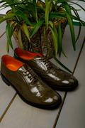 Green lacquered oxford shoes on wooden background near flowerpot. Back view.  Stock Photos
