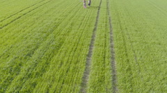 Boy and girl running on the green field. Aerial View Stock Footage
