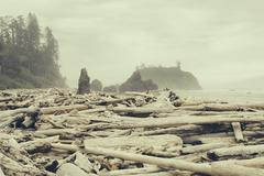 View of coastline from Ruby Beach, piles of driftwood in foreground. Stock Photos