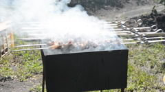 Preparing tasty meat barbeque on skewers Stock Footage