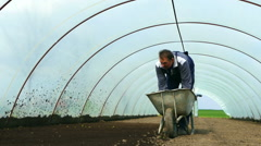 Manual spreading peat for planting peppers in a greenhouse. Stock Footage