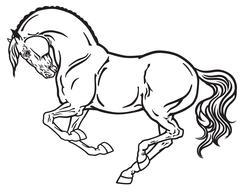 stallion black white - stock illustration