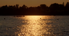 Rowing Team at Sunset on the Lake Stock Footage