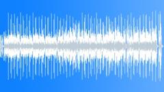 "Brazilian Accordion Party I_30"" - stock music"