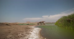 PERU: Lagoon with water reed in desert Stock Footage
