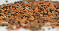 Rack Focus Assorted Lentils Spinning Close Up Stock Footage