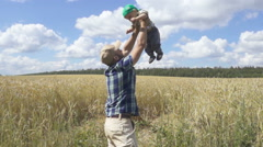 Father playing with young son on raising his hands above his head in a wheat Stock Footage