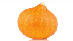 Ripe pumpkin rotate isolated on white background with reflection. Loopable. 4K Stock Footage
