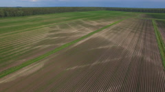 Aerial view of Fertile Agricultural Field Stock Footage