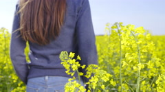 Person stand in middle of rapeseed field 4K Stock Footage