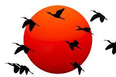 Birds Silouettes Stock Illustration
