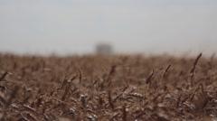 Wheat Harvest John Deere Combine Ground Shot Wide Shot Stock Footage